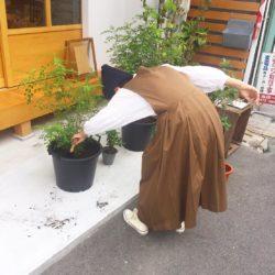 高槻市の美容室 植木