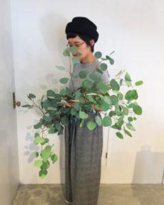 高槻市の美容室 植物