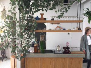 高槻市の美容室 おしゃれ 植物